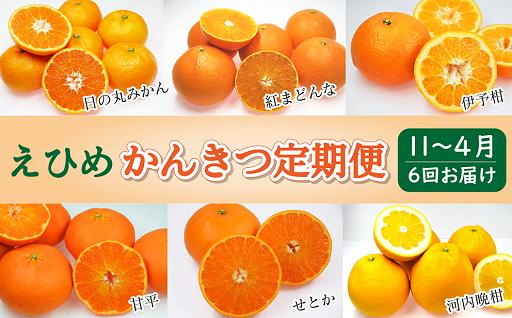 受付終了間近!柑橘王国愛媛より「かんきつ定期便」