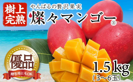 【樹上完熟】燦々マンゴー 【優品1.5Kg】