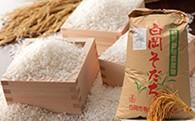 【減農薬・減化学肥料】特別栽培米 白岡そだち コシヒカリ(10kg、新米)