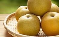 白岡の梨「白岡美人」彩玉梨5kg