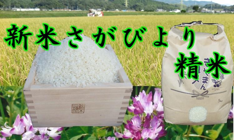 A-010 新米登場!★れんげの力★さがびより 精米5kg【8年連続・食味「特A」】