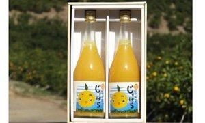 佐賀県太良町返礼品じゃばらストレート果汁