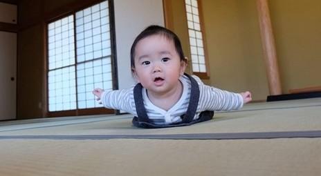 [№5682-0130]『赤ちゃん用!』 寝ゴザ ☆日本で唯一農薬不使用・無染土のイ草使用