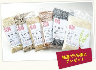 新保さんの有機栽培古代米 5種とアマランサス