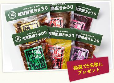 刈羽節成きゅうりの漬物セット6種