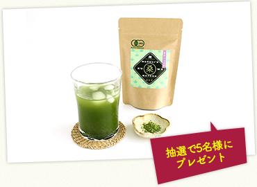 諸木の桑抹茶(身体にやさしいオーガニック)