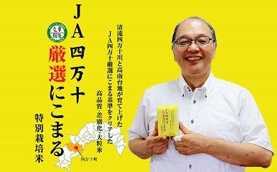 高知県四万十町返礼品新ブランドお試しセット