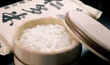 島根県奥出雲町返礼品お米5㎏定期便