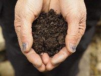徳島のすくもは、藍の栽培からすくもづくりまでを担う「藍師」により、伝統的なスケジュールや製法に従って、製造されています。   9~12月に乾燥させた藍の葉に水をかけ、よく混ぜ合わせ、積み上げることを繰り返し、発酵させます。  この作業は、すくもの品質に大きく影響するため、長年の経験を必要とします。
