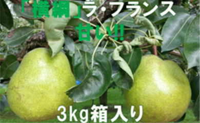 A-238 30年_洋なし「【横綱】ラ・フランス」3kg