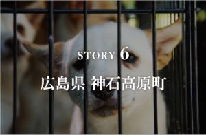 STORY6 広島県 神石高原町