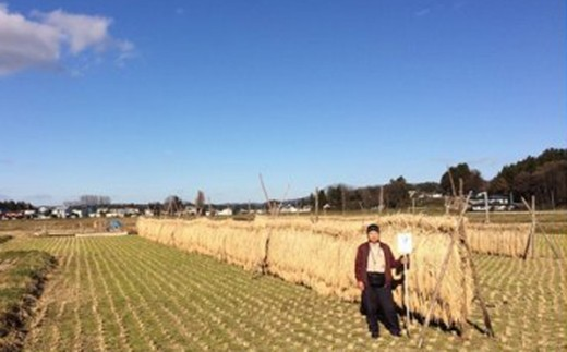 【数量限定】木こりの菊池農園 自然栽培米【亀の尾】(白米・玄米) 10㎏