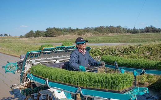 【30年度産】【新米】 減農薬・有機肥料使用 健康志向の方向け 精研さんのお米 3kg×2