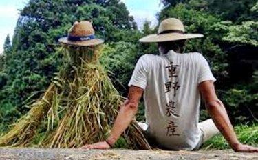 【重野農産コメント】