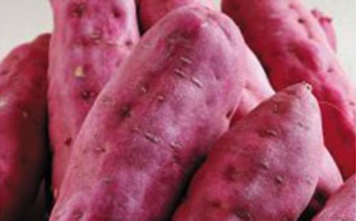 [A-1152] 「三里浜金時」 10kg ~砂地で育ったおいしいサツマイモ~