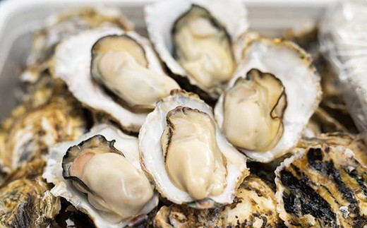 A025-01壱岐 内海湾産 殻つき生牡蠣3kg (オープナー付き)  3,000pt