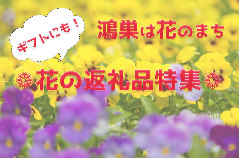 埼玉 鴻巣 コロナ