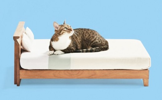 【終了】総無垢仕様のネコベッド。専用スノコ、マットレス&枕付