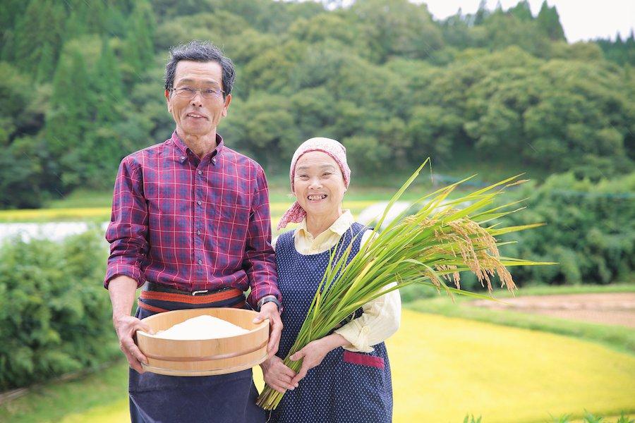 一切農薬を使わずに作られる合鴨米