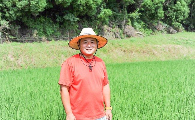 黒川温泉の旅館さんでも採用される自慢のお米を是非一度ご賞味ください!