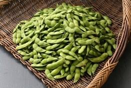 A-19 くろさき茶豆