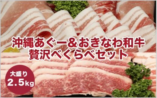 SC06:沖縄あぐー&おきなわ和牛の贅沢食べ比べセット