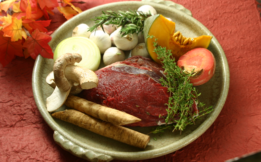 [№5723-0259]高タンパク・低カロリー・低脂肪 えぞシカ肉セット