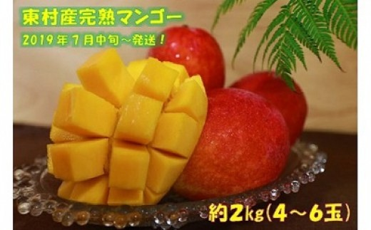 【2019年発送】農家直送! 東村産の完熟マンゴー 約2kg(4~6玉)