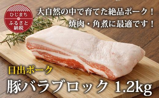 【日出ポーク】豚ロースブロック 1kg