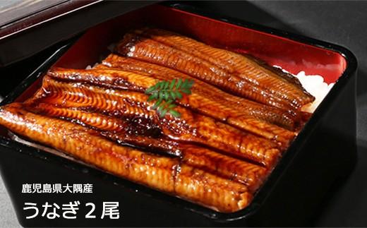724 鹿児島県大隅産うなぎ蒲焼2尾(340g)