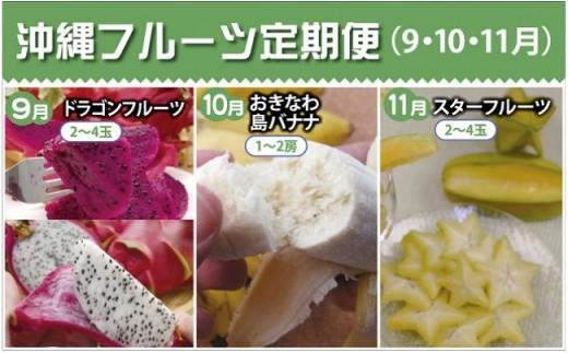 沖縄フルーツ定期便(9・10・11月コース)