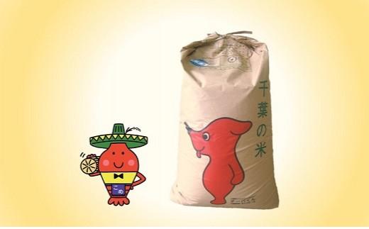 L201  コメアミーゴこだわりのいすみ米コシヒカリ30kg(玄米)