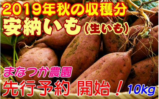 種子島安納いも(生いも)10kg 400pt NFN002