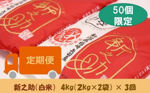 [C359]【定期便】ヤタらうんめぇ 新之助 白米(4㎏×3回)