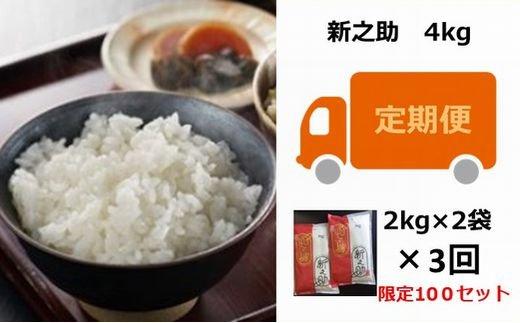 [C364]【定期便】お米の十一屋の新之助(4kg×3回)