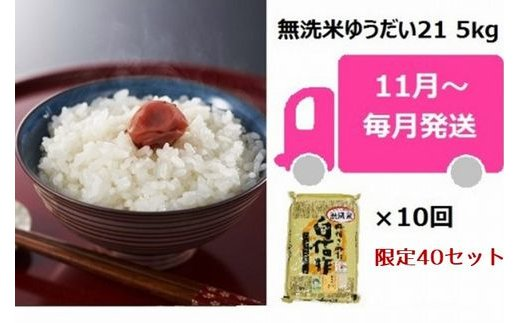 [E910]【定期便】中村農研の無洗米ゆうだい21(5kg×10回)