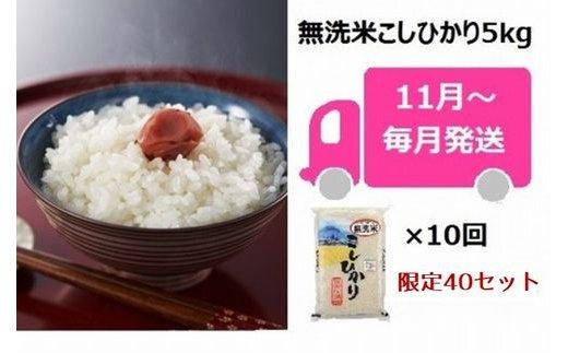 [E908]【定期便】中村農研の無洗米コシヒカリ(5kg×10回)