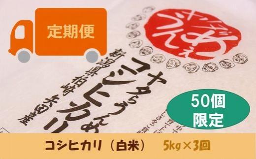 [C360]【定期便】ヤタらうんめぇ コシヒカリ 白米 (5㎏×3回)