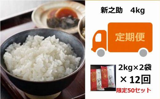 [E922]【定期便】お米の十一屋の新之助(4kg×12回)