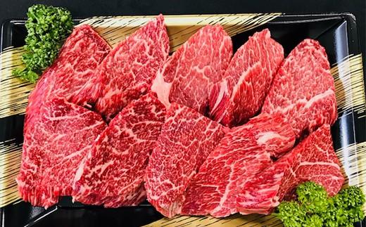 熊本県産 黒毛和牛 ヒレ ステーキ 約1kg『大容量 約100g×10』