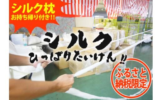 繭(まゆ)がシルク製品となる工程を体験!「シルク引っ張り体験」〈シルクが入った枕のお土産付き〉
