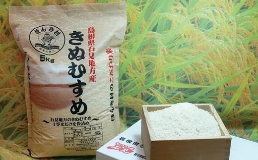 237.【令和元年度新米発送】石見産きぬむすめ1年分60kg(5kg×12回コース)