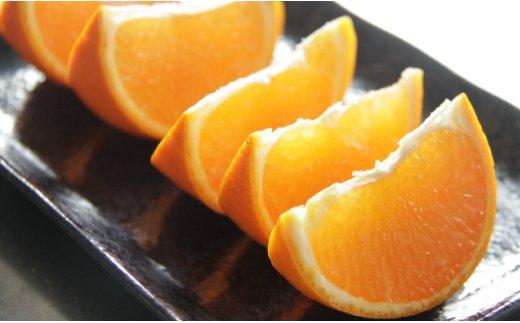 ★とろっとジューシー柑橘の女王 せとか3㎏ C-123