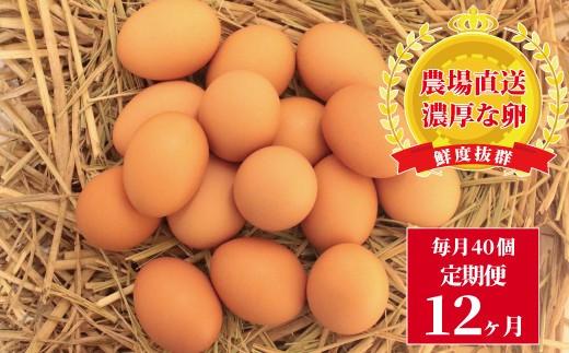 BD-4 むこたま【農場たまご】Mサイズ 40個 定期便12ヶ月