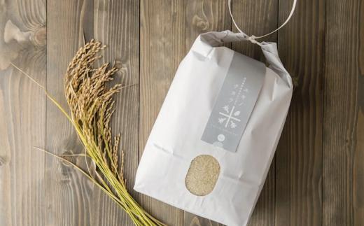 秋の新米予約受付【お米】白米 5kg あきたこまち「ユキノチカラ米」