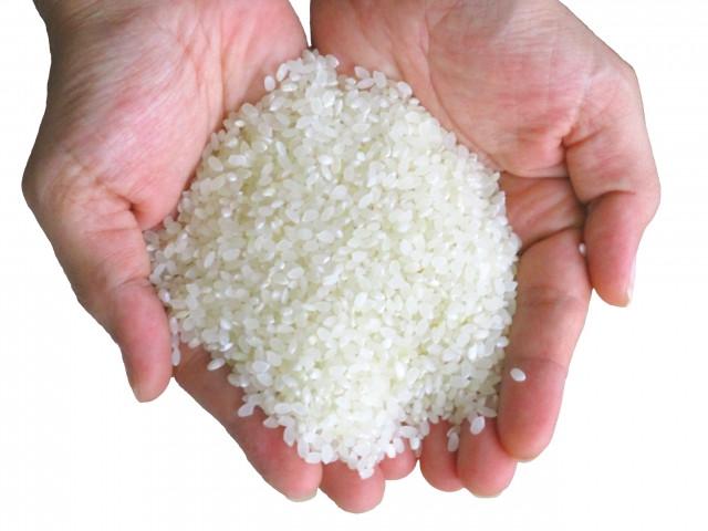 お求めやすさにこだわった「米屋のこだわり米」