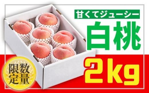 FY19-668 ★フルーツ王国山形★白桃秀品2kg やわらか系品種