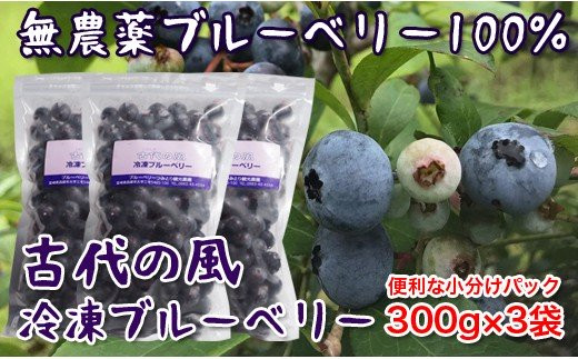 『古代の風』無農薬ブルーベリー900g<1-57>