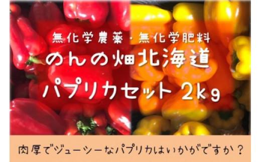 のんの畑北海道パプリカ(2020年発送分)