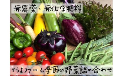 そうまファーム季節の野菜詰め合わせ (道の駅とうまセレクト)